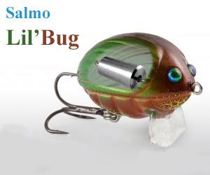 LilBug_core