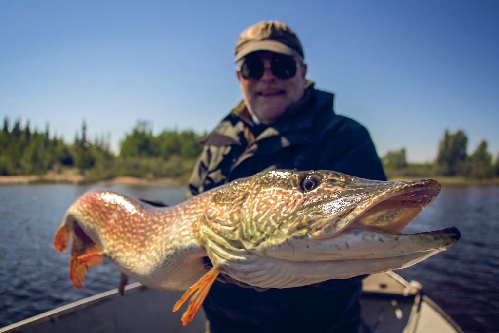 Риболов на щука в Канада